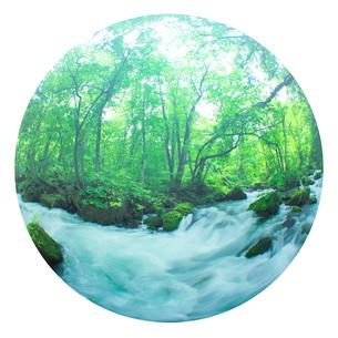 清流と新緑の写真素材 [FYI01507914]