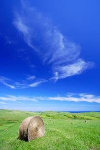 牧草ロールと青空の写真素材 [FYI01507921]