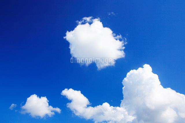 わた雲の写真素材 [FYI01507989]