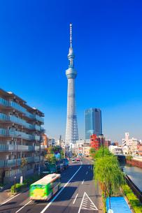 東京スカイツリーと都バスの写真素材 [FYI01508009]