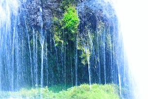 滝状の岩清水の写真素材 [FYI01508067]