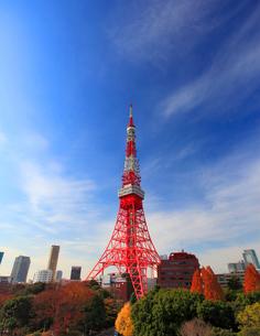 東京タワーの写真素材 [FYI01508107]