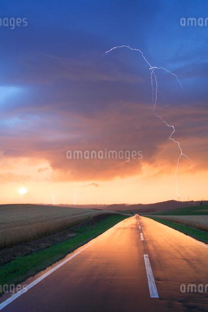 雨に濡れた道路と小麦畑の写真素材 [FYI01508212]