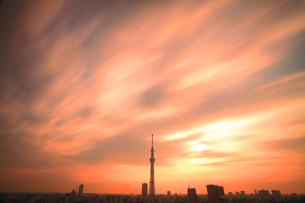 東京スカイツリーと朝日と流れる雲の写真素材 [FYI01508225]