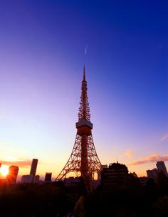 東京タワーと夕日の写真素材 [FYI01508232]