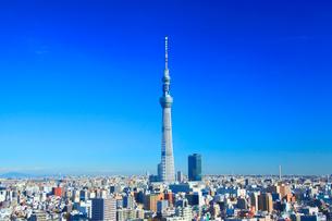 東京スカイツリーの写真素材 [FYI01508249]