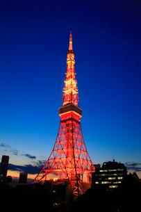東京タワー,夕夜景の写真素材 [FYI01508251]