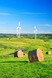 風力発電の風車と牧草ロールの写真素材 [FYI01508606]
