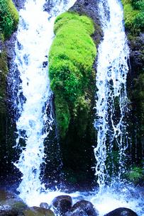 滝状の岩清水の写真素材 [FYI01508660]