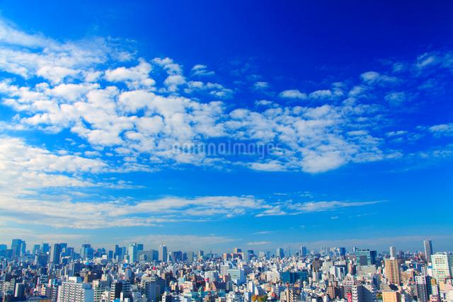 浅草から望む都心と新宿のビル群と秋空の写真素材 [FYI01508691]