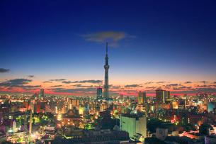 黎明の浅草の街並と東京スカイツリーの写真素材 [FYI01508695]