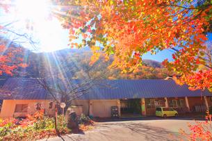 紅葉の五色温泉の写真素材 [FYI01508860]