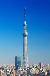 東京スカイツリーの写真素材 [FYI01508872]