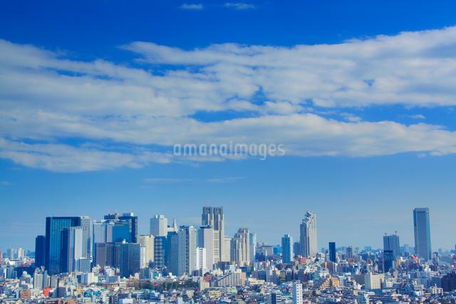 新宿のビル群の写真素材 [FYI01508949]