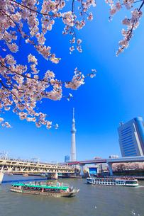 ソメイヨシノと東京スカイツリーと隅田川と遊覧船と東武電車の写真素材 [FYI01509067]