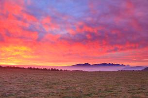 朝焼けの牧草地と八ケ岳連峰と富士山の写真素材 [FYI01509191]