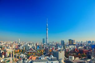浅草の街並と東京スカイツリーの写真素材 [FYI01509200]