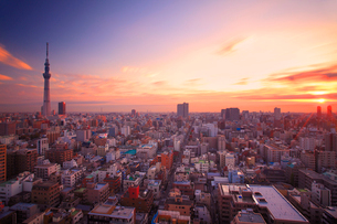 朝日と流れる雲と東京スカイツリーと下町両国の街並の写真素材 [FYI01509349]