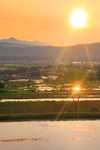 輝く福島の棚田と菜の花公園と妙高山と夕日の写真素材 [FYI01509513]