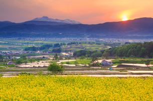 福島の棚田から望む菜の花公園と妙高山と夕日の写真素材 [FYI01509618]