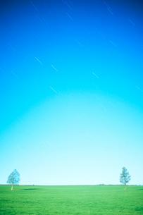 月夜の牧草地と木立の写真素材 [FYI01509760]