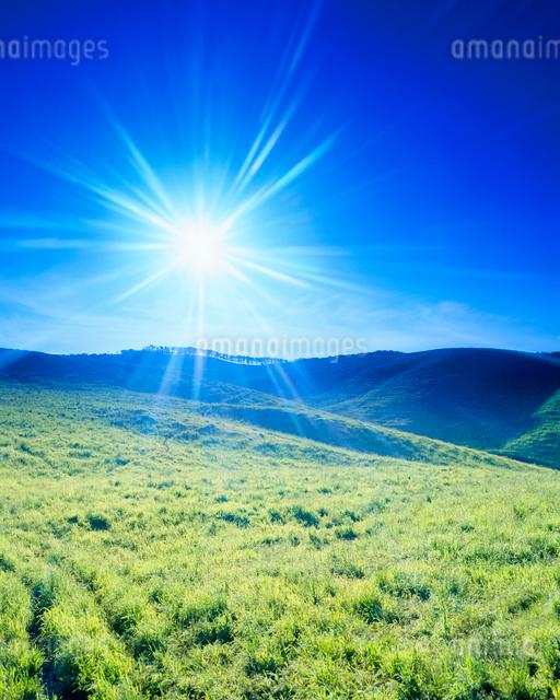 牧草地と太陽の光芒の写真素材 [FYI01509811]
