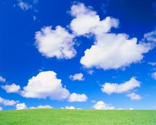 牧草地とわた雲の写真素材 [FYI01509855]