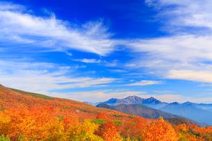 ナナカマドとダケカンバの紅葉と穂高連峰と槍ヶ岳など北アルプスの写真素材 [FYI01509858]