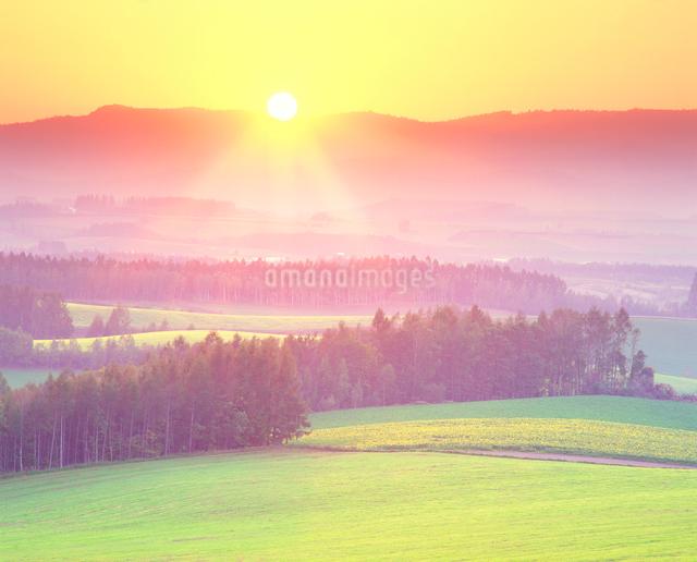 牧草地などの丘と夕日の光芒の写真素材 [FYI01510021]