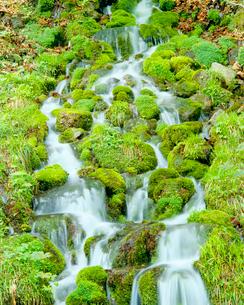 冷湖の霊泉の清流の写真素材 [FYI01510037]
