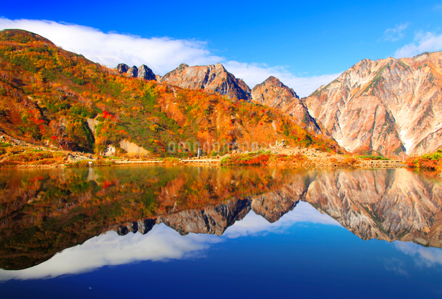 紅葉の八方池と白馬連峰の不帰嶮の水鏡の写真素材 [FYI01510127]