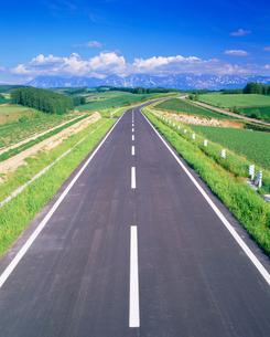 道路と十勝連峰と小麦などの畑の写真素材 [FYI01510179]