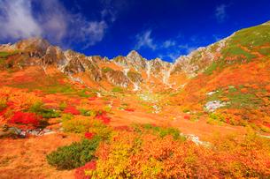 ナナカマドとダケカンバの紅葉と宝剣岳の写真素材 [FYI01510310]