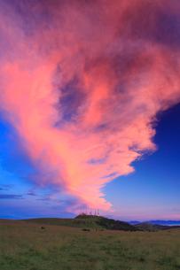 王ヶ頭のアンテナ群と牧草地と黒毛和牛と朝焼けの写真素材 [FYI01510326]