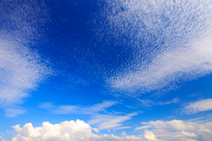 うろこ雲など秋空の写真素材 [FYI01510459]