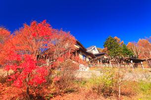 紅葉の奥山田温泉の写真素材 [FYI01510469]