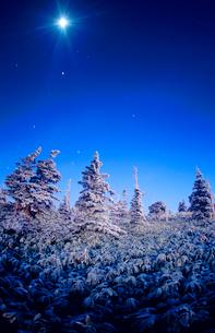 月夜の霧氷の樹林の写真素材 [FYI01510551]