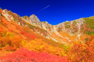 ナナカマドとダケカンバの紅葉と宝剣岳と飛行機雲の写真素材 [FYI01510751]