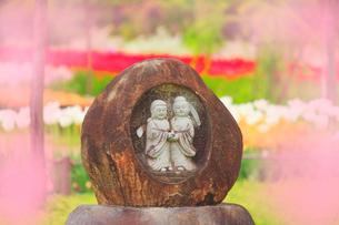 夫婦道祖神とチューリップ畑の写真素材 [FYI01510760]
