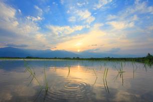 田植え直後の田園と常念岳と有明山など北アルプスの山並みと夕日の写真素材 [FYI01510803]