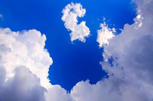 真下から見上げる入道雲の写真素材 [FYI01510893]