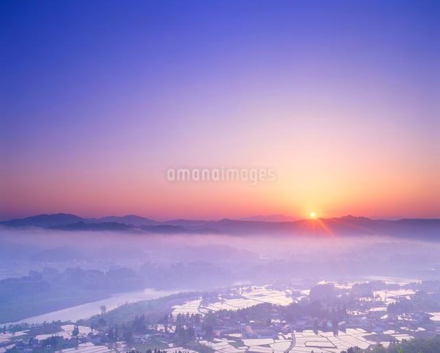 田園と信濃川と朝日の光芒の写真素材 [FYI01510895]