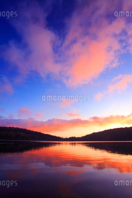 水鏡の白駒池の水面と朝焼けの雲の写真素材 [FYI01510964]