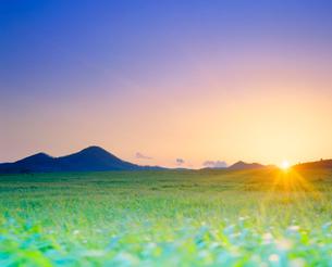 牧草地と夕日の写真素材 [FYI01510966]