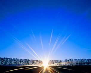 白樺並木の丘と朝日の光芒の写真素材 [FYI01511135]