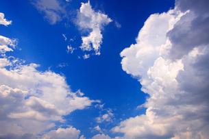入道雲の写真素材 [FYI01511242]