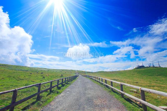 牧草地の道路と太陽の光芒と王ヶ頭のアンテナ群の写真素材 [FYI01511262]