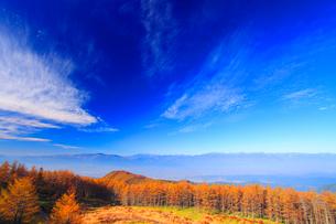 秋空と紅葉のカラマツ林と穂高連峰などの山並みの写真素材 [FYI01511545]