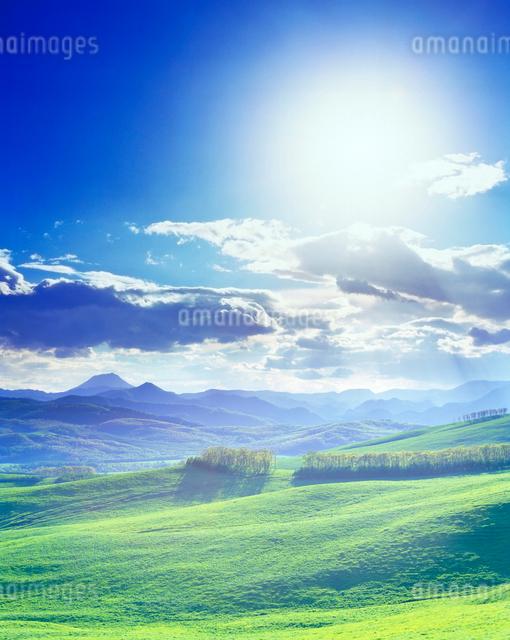 牧草地と雄阿寒岳と太陽の光芒の写真素材 [FYI01511590]