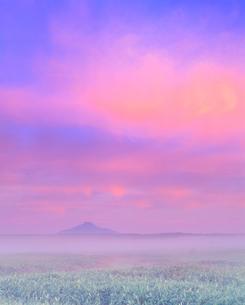 朝霧のサロベツ原野と利尻岳の写真素材 [FYI01511901]